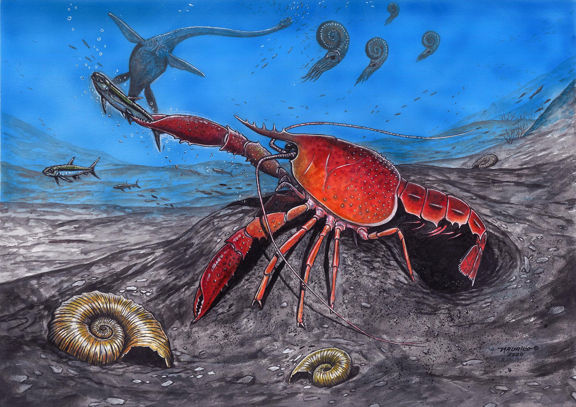 A contribuição de pesquisadores do Araripe com a paleontologia mundial